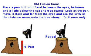 Artificial 3-D Fusion Fuse the kitty onto the tree stump. FOR EYE DOCTOR ONLY TO TEACH