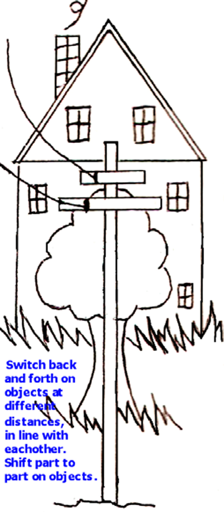 Switch, Shift on the Pole, Tree, House